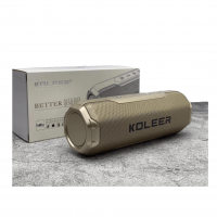 Koleer – Portable Wireless Bluetooth Speaker S218