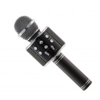 WSTER WS-858 Wireless Microphone and Hifi Speaker